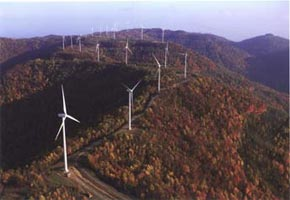 Buffalo Mountain Wind Energy Project fall image