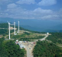 Buffalo Mountain Wind Energy Project summer image